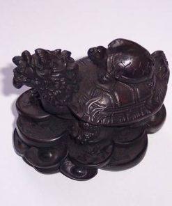 Testoasa dragon cu broscuta in spate, pe monede si pepite