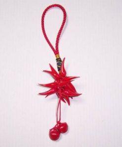 Canaf Feng Shui pentru noroc cu ardei rosii