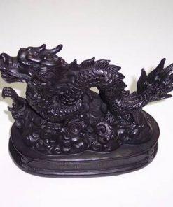 Dragonul imperial - remediu Feng Shui