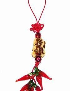 Canaf Feng Shui cu Pisoi auriu, ardei si nod mistic