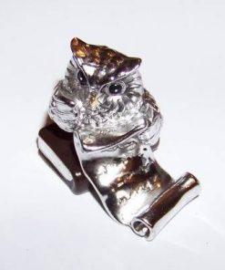 Bufnita argintie cu pergament