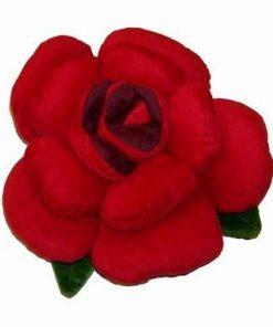 Bujorul dragostei din plus - rosu