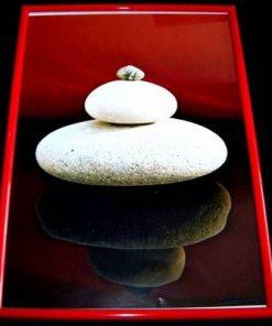 Tablou Feng Shui ce reprezinta echilibrul Yin-Yang - unicat!